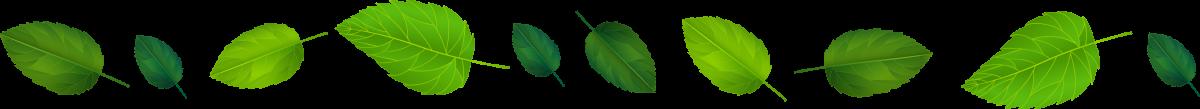 hojas-eje-gobernanza